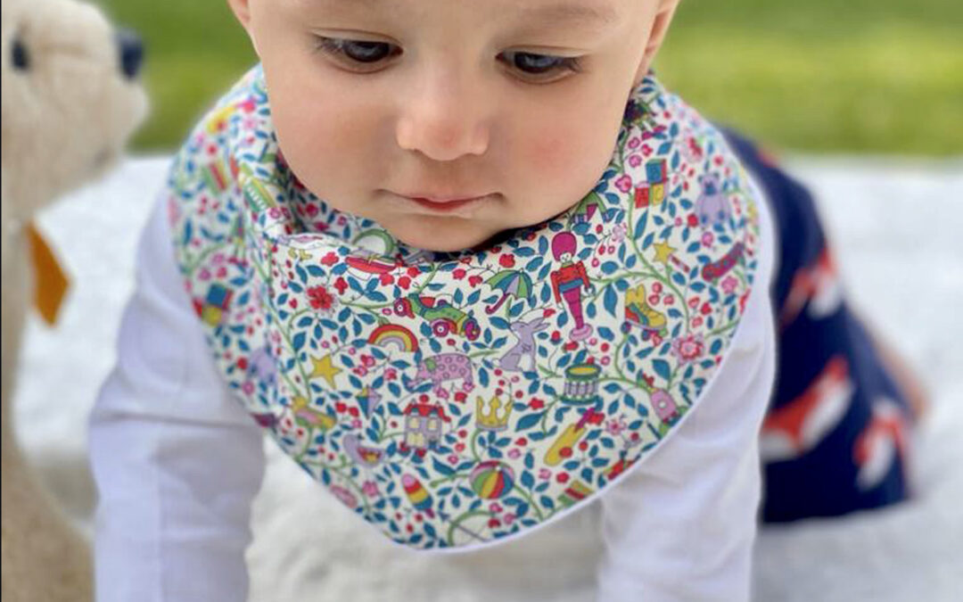 Facts about Dribblebuster Best Baby Bibs